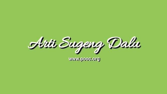 Arti Sugeng Dalu